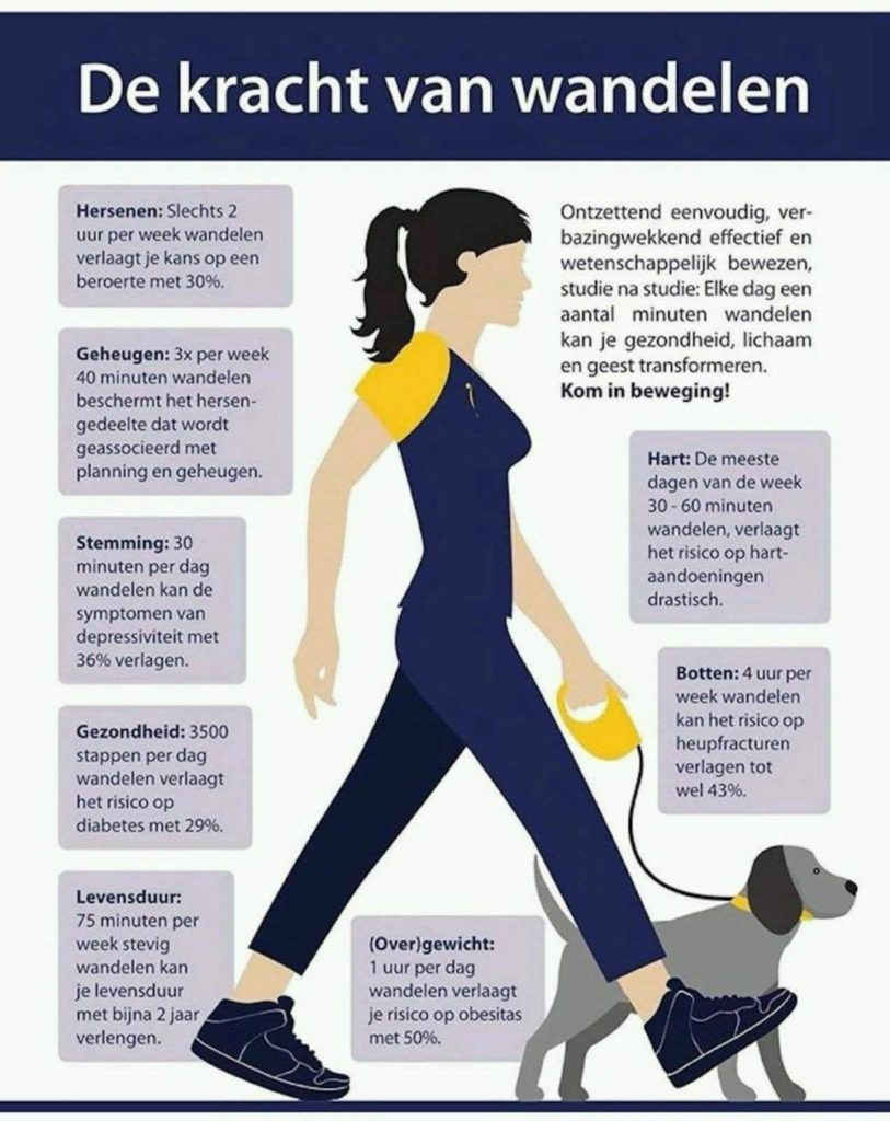 De kracht van wandelen - Paramedisch Centrum Impact